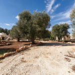 Driveway leading to a villa and trullo