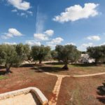 All this could be yours: the large expanse of olive groves with the typical reddish Puglia earth, great for quality wine production— with a mixture of iron oxide