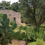 Lush, private garden - take in the sound of nature