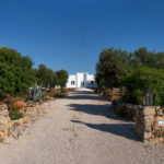 The long, gravelled driveway leading to Villa Laura